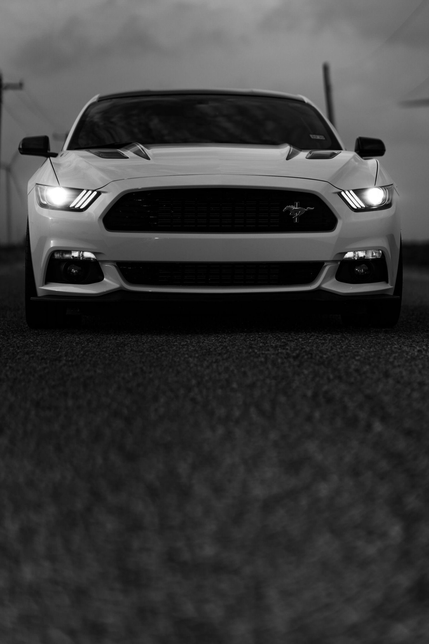 Mustang-4